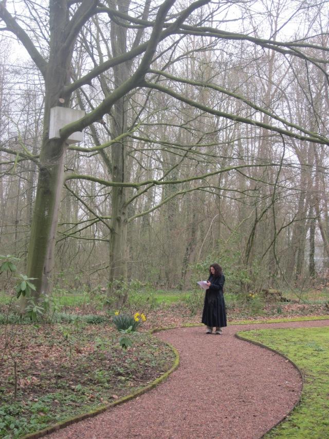 "Pepijn Lambermont ""Kubus in boom"" (2011)"